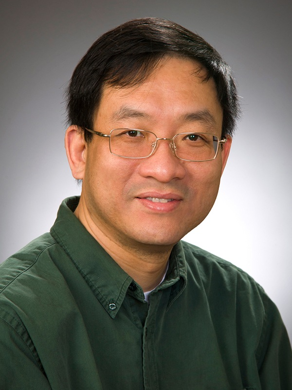 wei-yong